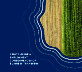 Africa Guide - Employment Consequences of Business Transfers