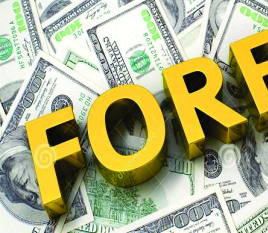 Establishment of Investors' and Exporters' FX Window A Floating of the Naira